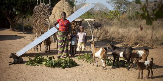 Delfina Bernado in Mosambik hat von Oxfam Ziegen zur Existenzsicherung bekommen. © Abbie Trayler-Smith/ Oxfam Australia