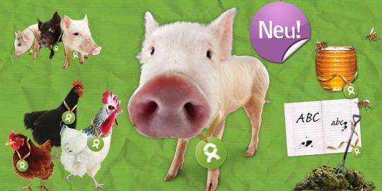 Schwein, Honigbienen & Co.: Neue Geschenke bei OxfamUnverpackt