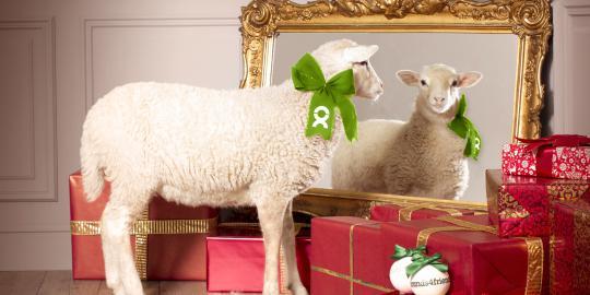 EinZiegartiges Schafspärchen von OxfamUnverpackt für Brands4friends (Foto: Brands4friends)