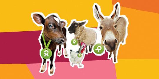 """OxfamUnverpackt Geschenke """"Eine bunte Herde"""""""