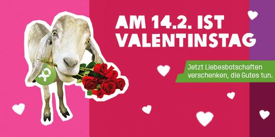 Ein Ziege zum Valentinstag von OxfamUnverpackt, die Gutes tut!